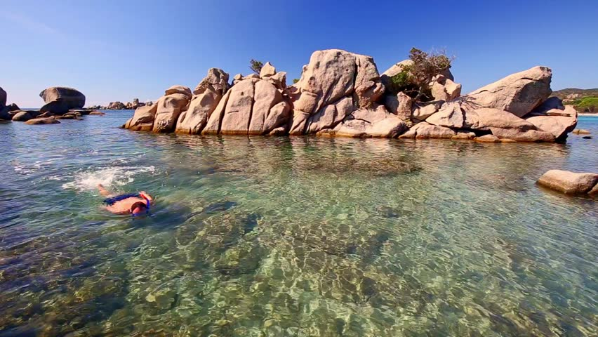 Young attractive man snorkeling in green lagoon near famous pine tree on Palombaggia sandy beach on the south part of Corsica, France, Europe