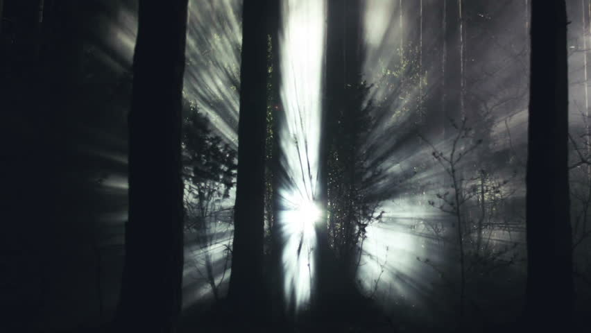 Cinematic light rays in the night forest mystical smoke and fog - HD stock video clip & Cinematic Light Rays In The Night Forest Smoke And Fog Stock ... azcodes.com
