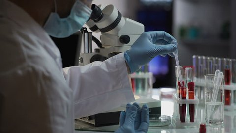 Lab assistant makes urgent blood test for detection of antibodies and infections. Scientist examining sample, looking into microscope, chemical experiement. Researcher working in clinic, healthcare