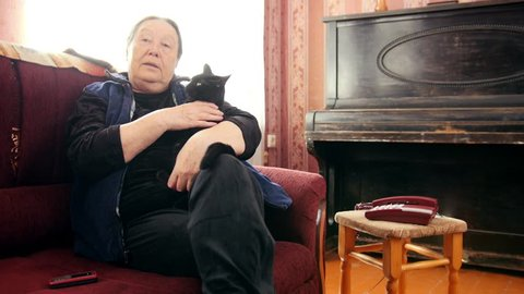 Portrait of senior lady at home - old woman sits on sofa with black cat