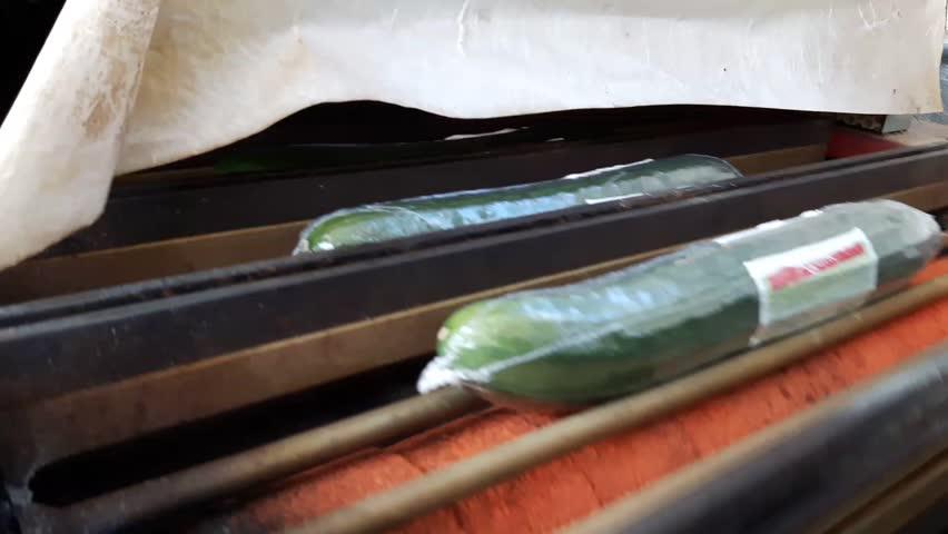 Cucumber shrink film packaging machine at closeup