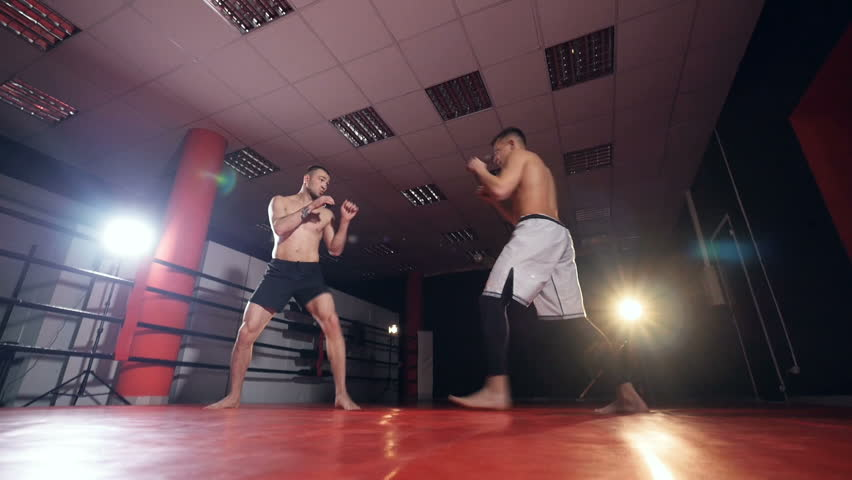 MMA fighters sparring in the ring in darkness. Slow motion, steadicam shot.