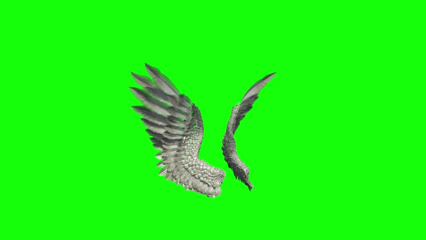 as angels flap their wings Stream the full episode (sub) when egrets flap their wings from season 4 episode 167 of naruto.