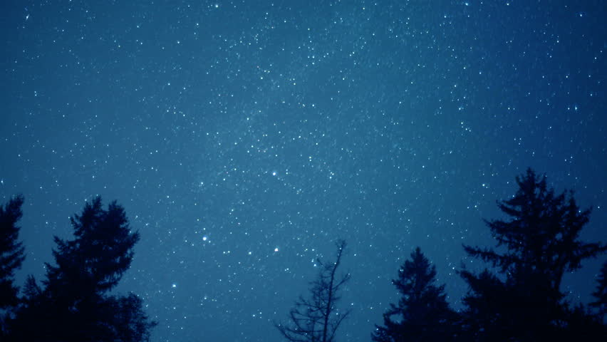 Stars Turn Through Trees, Time Lapse