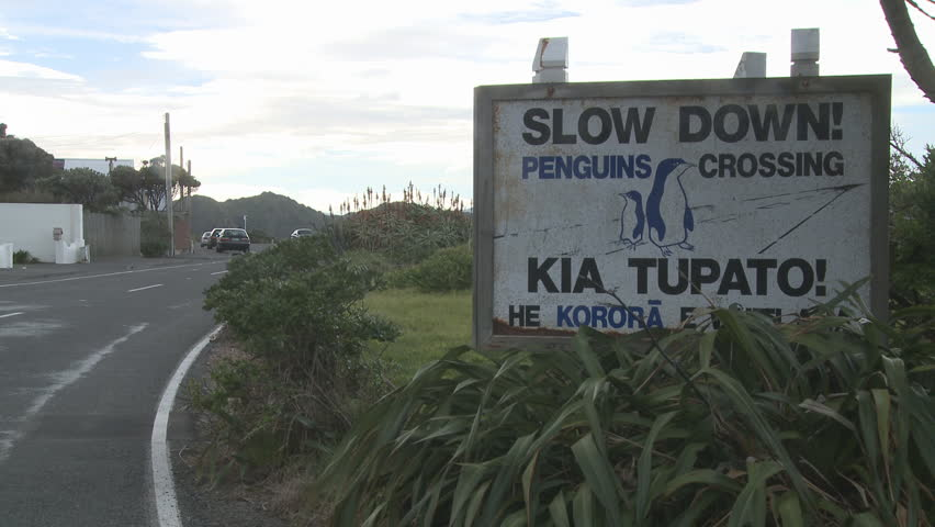 penguins crossing sign