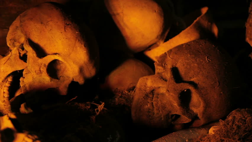 Skulls revealed from the shadows