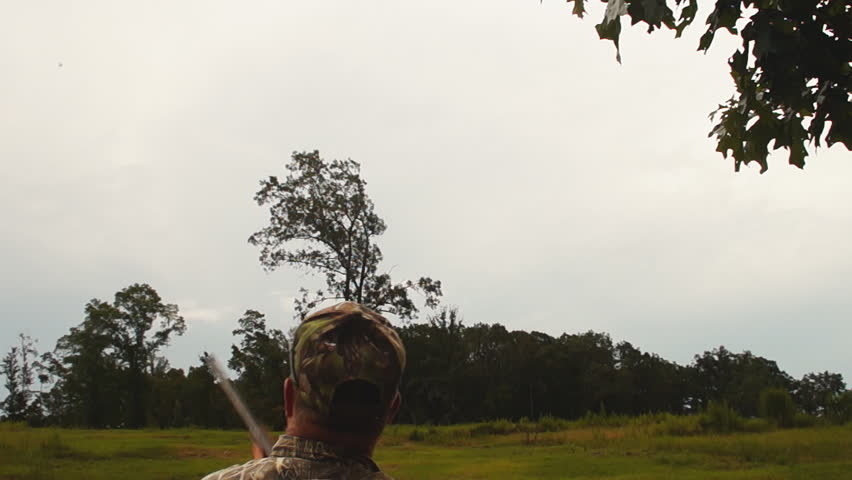 Dove Hunting, popular form of bird hunting