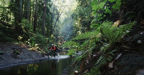 Mountain bikers riding through stream in lush green rainforest towards camera during adventure extreme race. Wide angle tracking shot with motion exterior daytime.