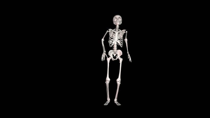 Skeleton White Disco dancing. Alpha channel appended.