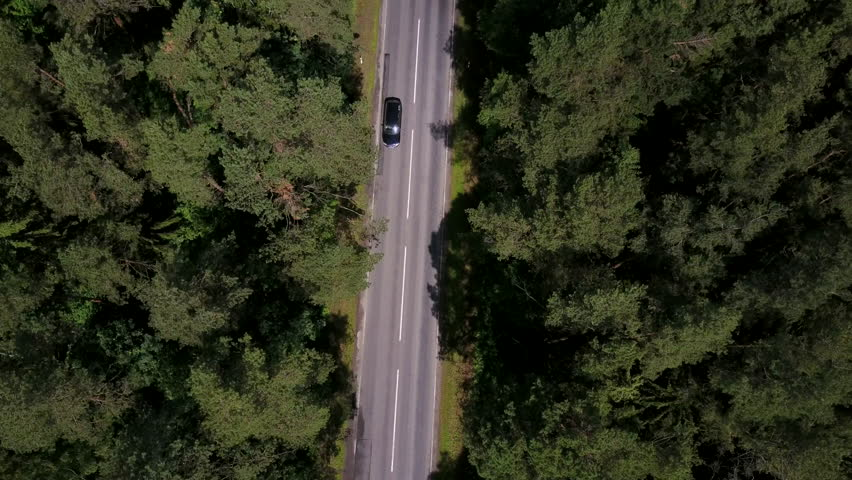 The road between the woods with some cars.  #27983230