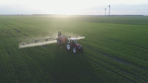 4K aerial view. Tractor is spraying pesticides on grain field.