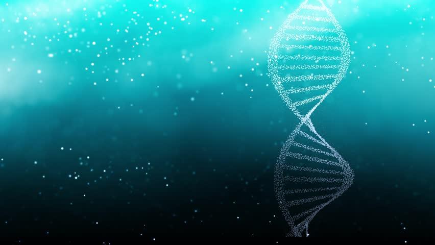 DNA Blood Chromosome Chain Helix  | Shutterstock HD Video #28027957