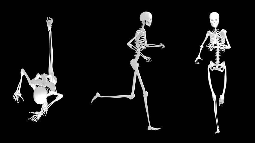 4k 3d rendered loopable skeleton runs animation with alpha channel