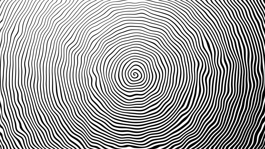 Spiral background. Black stripes in motion on a white background. Backwater. Rotation, jellies, waves