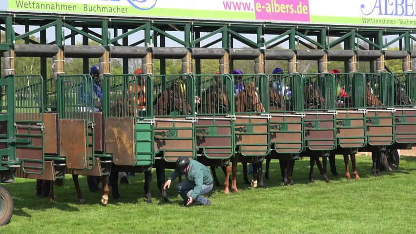 Hannover, GER, 1 May 2016, 4k Horse racing start from starting boxes at race track and passing by close up / 4k Horse racing start from starting boxes at race track and passing by close up