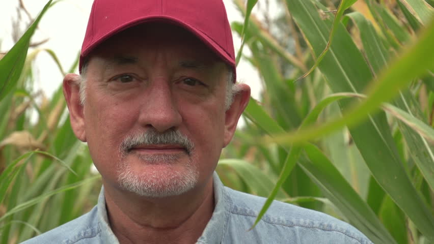 Farmer, close up of face in corn field | Shutterstock HD Video #2846620