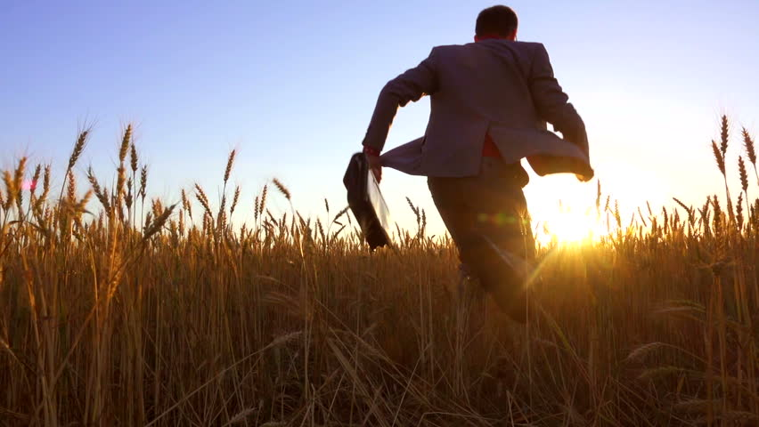 Rear view of businessman running across a wheat field in sunset direction, waving a briefcase. Low angle shot. Backlight. Slow motion
