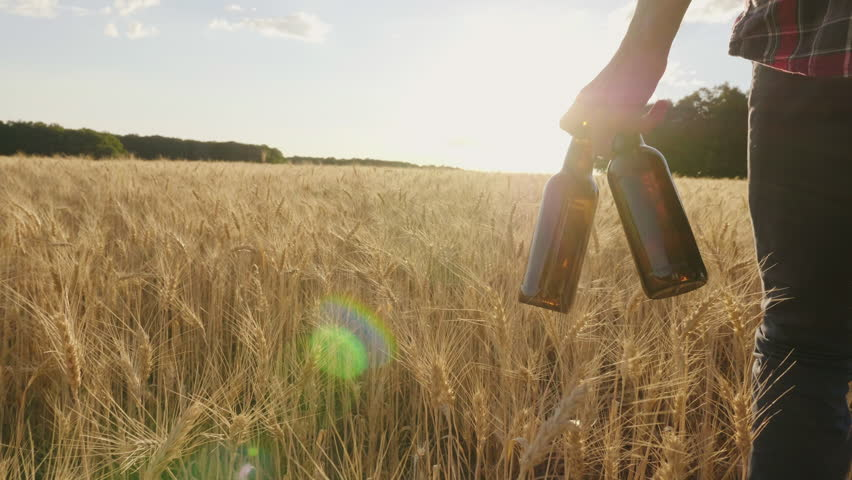 Two cold beer bottles on a hot day. The man carries a barley field against the background, the setting sun beautifully illuminates