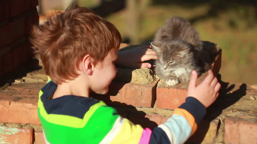 boy plays with a cat in the street