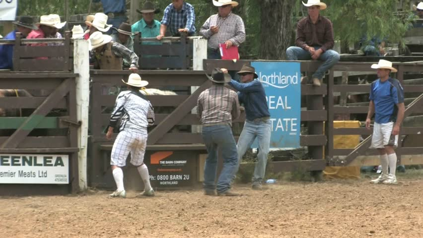 NORTHLAND, NEW ZEALAND - CIRCA JANUARY 2012: Cowboy rides bull and falls circa January 2012 in Northland, New Zealand. The rodeo is an annual two day event, held in Northland each January attracting competitors or cowboys from all around New Zealand.