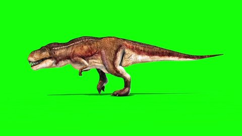 Tyrannosaurus T-Rex Runcycle Green Screen 3D Rendering Animation