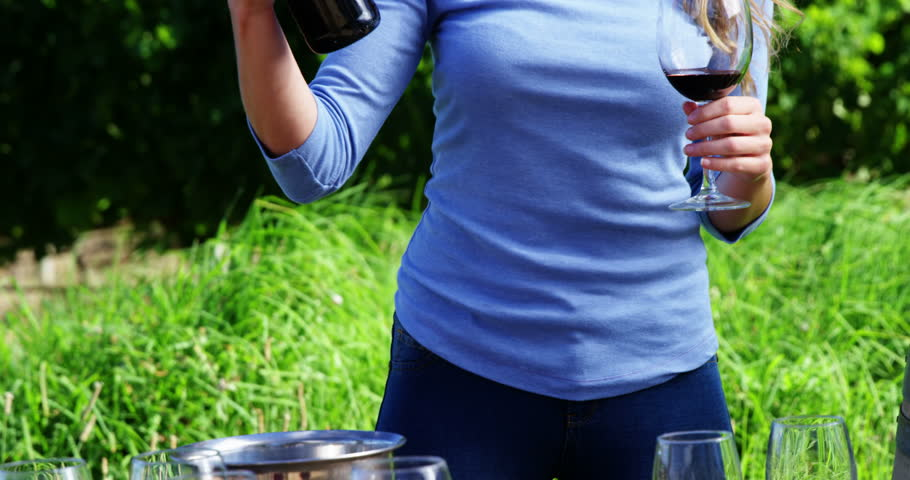 Beautiful woman examining wine in vineyard on a sunny day | Shutterstock HD Video #29210320