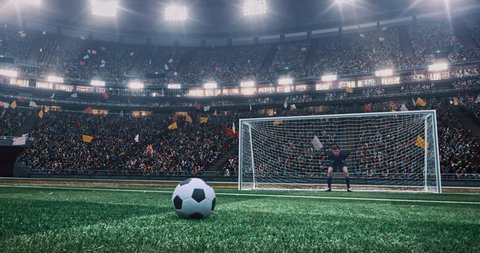 4k footage of a soccer player making a goal and goalie fails to catch it  on a professional outdoor soccer stadium. Players wear unbranded uniform. Stadium and crowd are made in 3D.