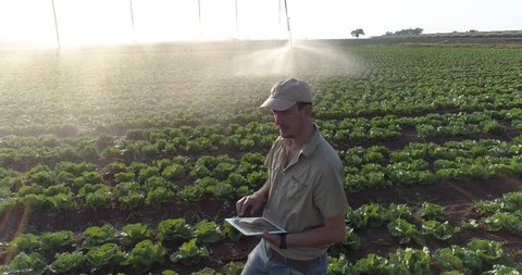 Aerial view of farmer using digital tablet and monitoring centre pivot irrigation on large scale vegetable farm