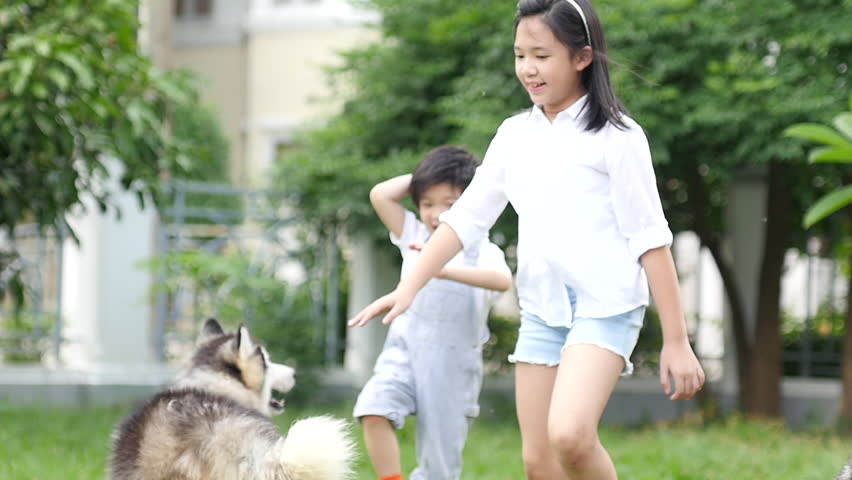 Happy Asian children playing with siberian husky dog in the garden slow motion