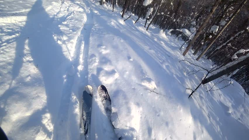 Skiing on the slopes of the mountains between the trees. A steep inclination. Freeride. Athlete at professional ski. Deep drifts. The First-person action camera | Shutterstock HD Video #29512510