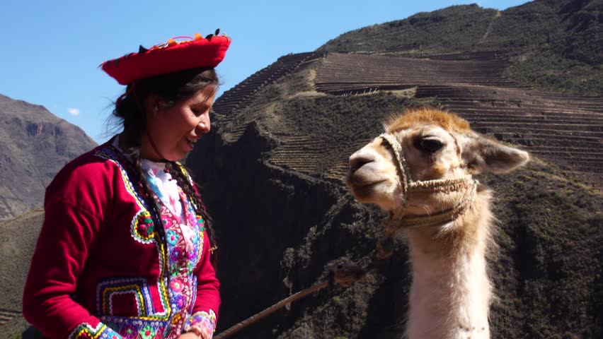Native Peruvian girl with her Llama in Sacred Valley, Cusco, Peru | Shutterstock HD Video #29556400