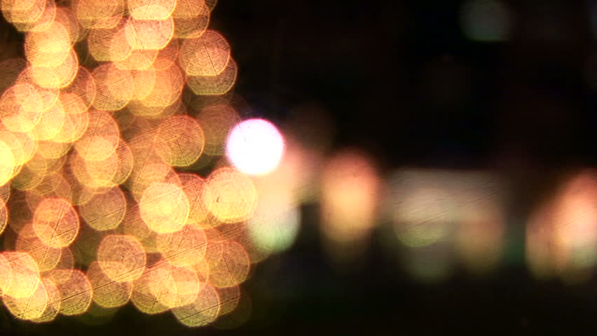 Rack focus of a large outdoor Christmas tree at night