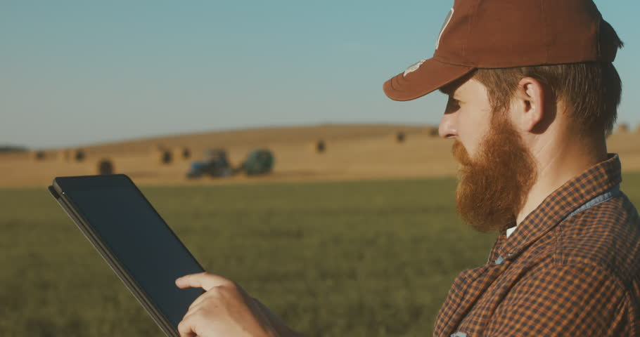 Modern farming concept, advanced technology in agriculture. Male farmer with portable tablet computer in a field using specialized app. 4K UHD 60 FPS #29731360