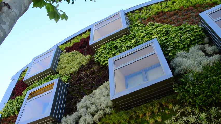 Windows in modern building with vegetation walls. Green environment, nature concept