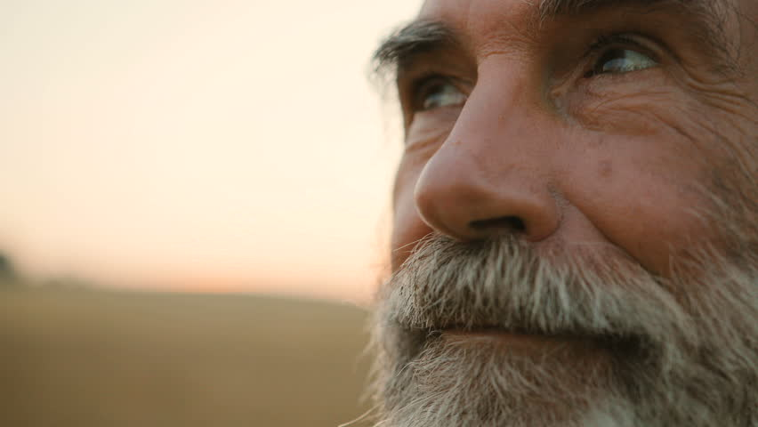 Close up portrait of senior man with beard looking to the camera in the golden field background.