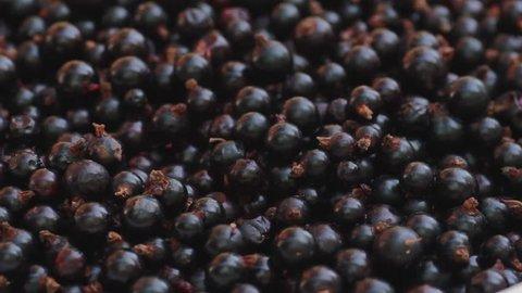 Blackcurrants in bowl