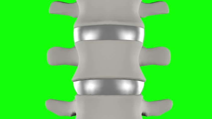 vertebra disc lumbar rotation B