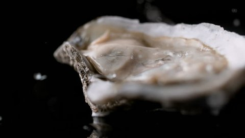 Water droplets on oyster. Shot with high speed camera, phantom flex 4K. Slow Motion.