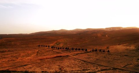Israel Aerial drone of Middle Eastern camel owners in desert convoy tourism