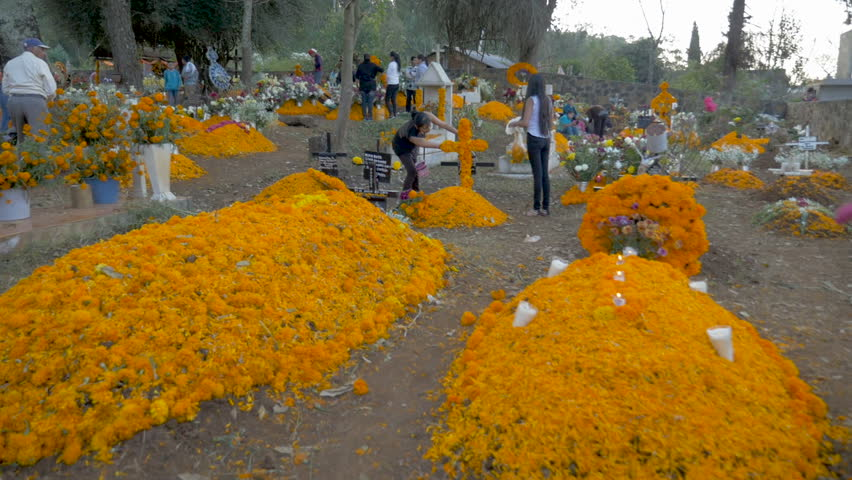 TZURUMUTARO, MEXICO - NOVEMBER 1, 2016 - Mexican families honoring their dead loved ones by decorating their graves with alters and shrines made of Marigold flowers during Day of the Dead
