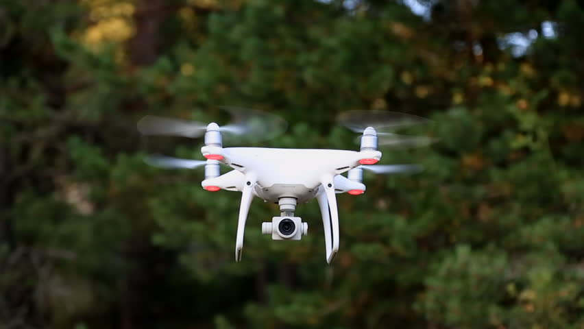 Quadrocopter Phantom 4 Pro Drone Flies In The Forest