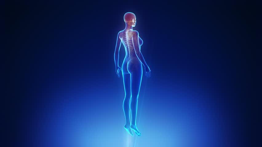 Female body scan in loop