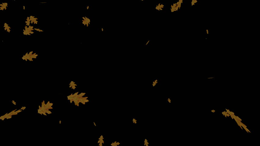 4K Leaves Fall Overlay Element Background for different projects... | Shutterstock HD Video #30774760