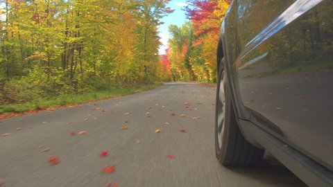 CLOSE UP Black car driving on empty road full of fallen leaves past colorful trees on autumn day. Detail of car tire spinning while driving through bright autumn forest in sunny fall. Car tyre rolling