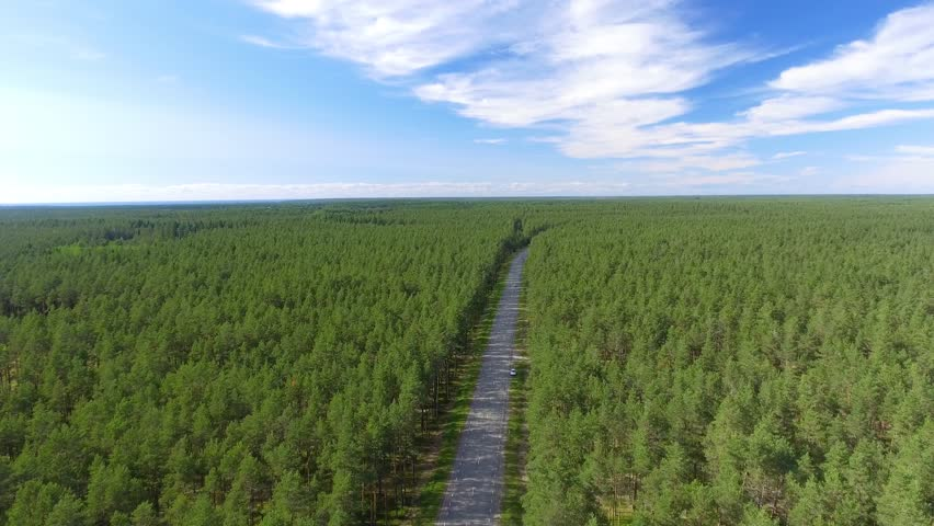 Aerial view of road across the forest.   Shutterstock HD Video #30973810