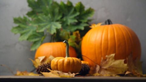 Halloween seasonal pumpkin on wooden table and grey background