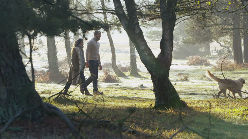 A young attractive couple stroll hand in hand through the forest with their happy dog. it is a cool, crisp morning with sunlight streaming through the trees. In slow motion.