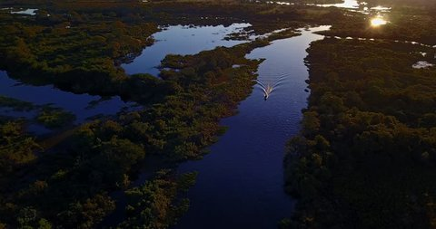 Boat sails in the Blue water river. Aerial image in the Pantanal Biome. Beautiful landscape. Native forest. Top view.  Mato Grosso do Sul state, Central-Western - Brazil.