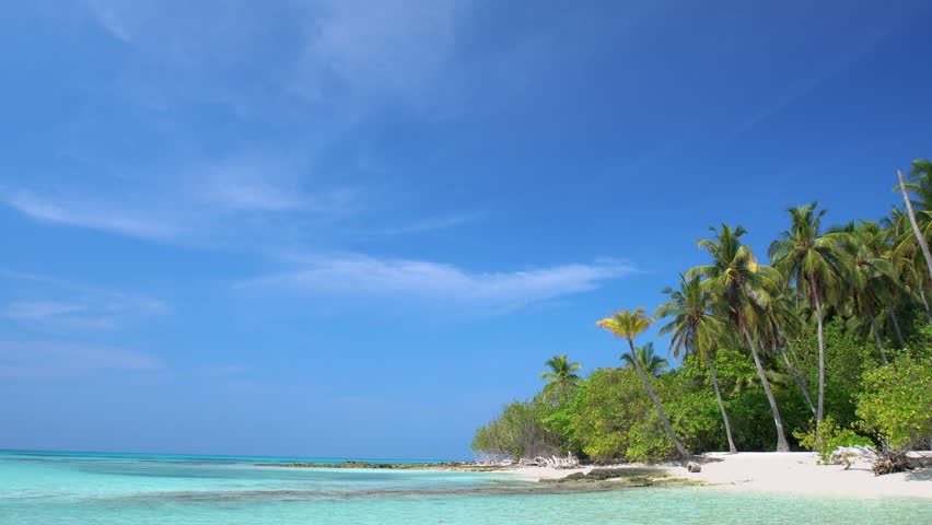 Tropical island at maldivian atoll in Indian Ocean. Wild  and uninhabited coast with palm trees. Travel destinations  | Shutterstock HD Video #31244890