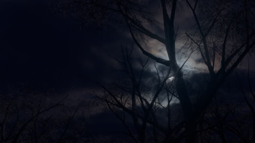 Forest and moon at night. Moving through a spooky forest as an eerie moon rises through fast moving clouds.4K